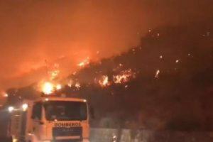 Përfshihet nga flakët ishulli turistik, mbi 200 zjarrfikës luftojnë me flakët, fillon evakuimi
