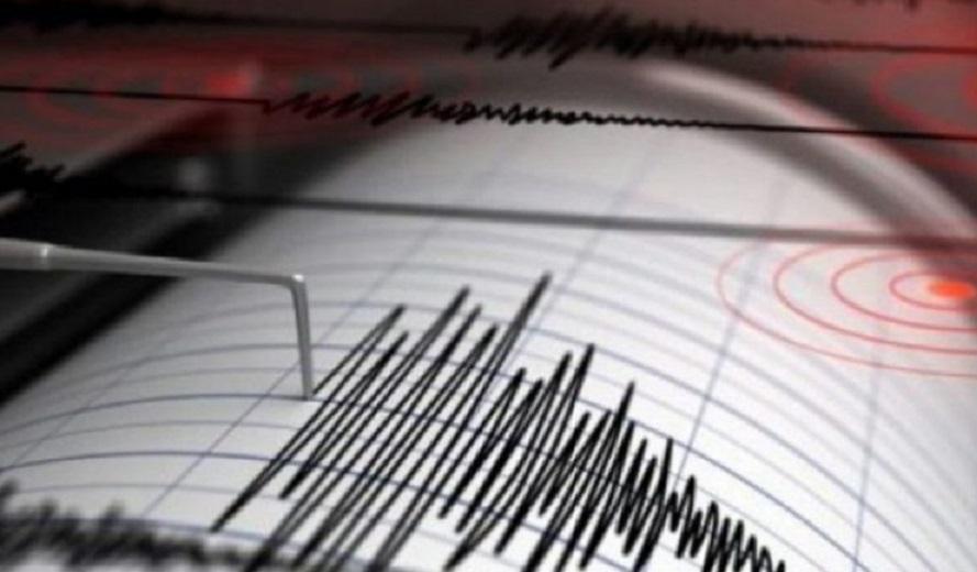 Pamje të frikshme nga tërmeti 6.9 në Japoni, gjithçka bie në tokë e shkatërruar, shkëputet dhe piktura në mur