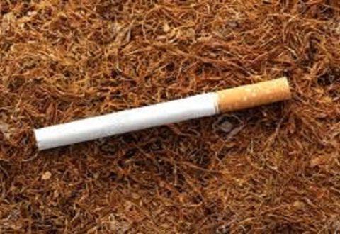 Nikotina dhe katër përfitimet prej saj